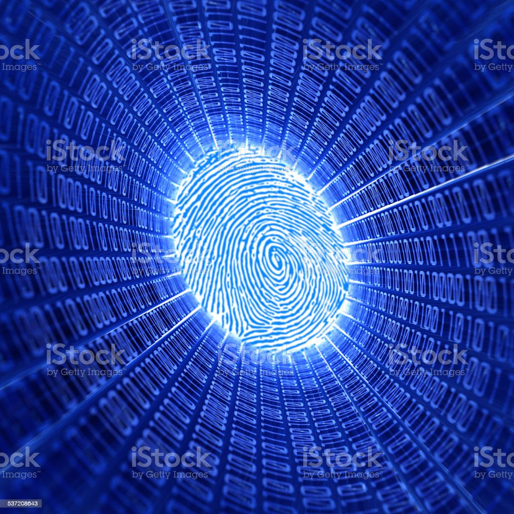 fingerprint and binary code stock photo