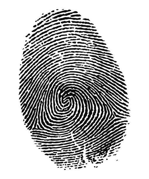 Fingerprint in Black and White stock photo