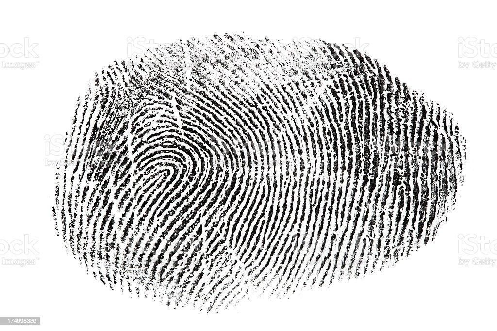 XXXL fingerprint isolated on white background. royalty-free stock photo