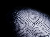 A whorl type fingerprint on a black background.