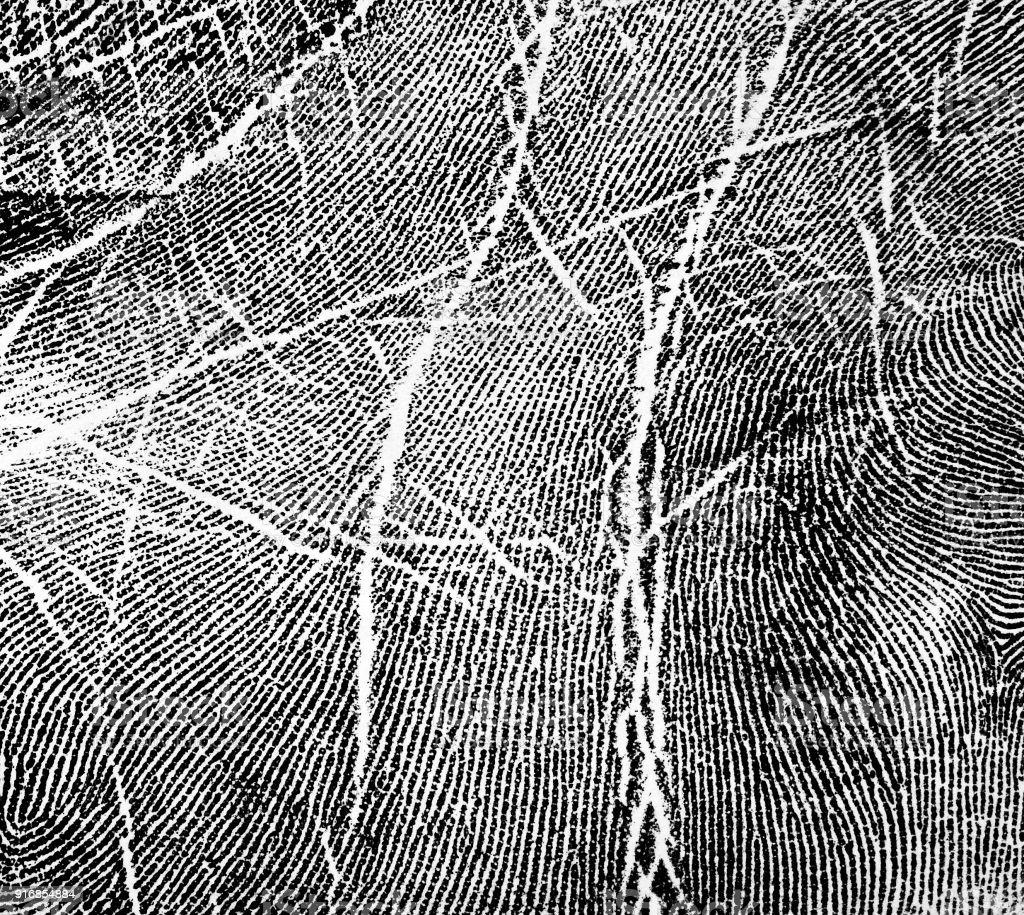 Impressão Digital no Livro Branco - foto de acervo