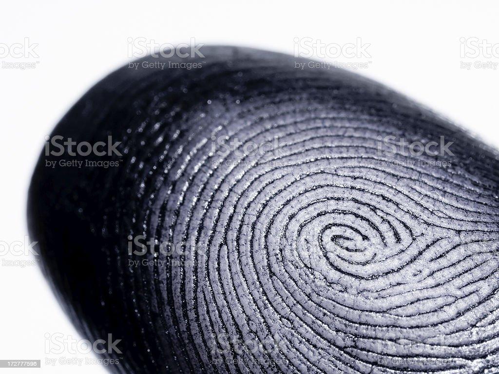 Fingerprint on White royalty-free stock photo