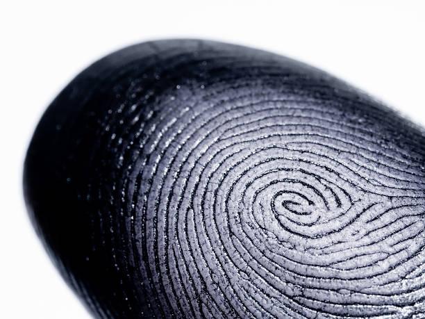 Fingerprint on White stock photo