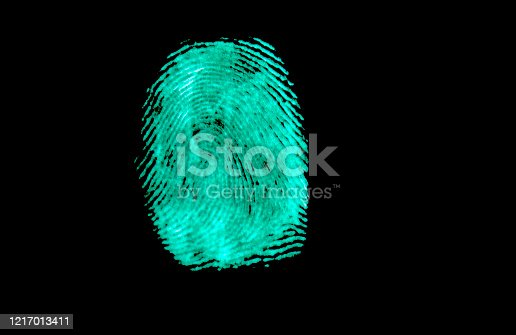 671053272 istock photo fingerprint 1217013411