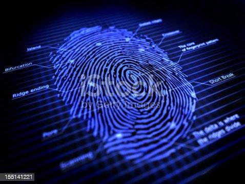3d fingerprint identification system