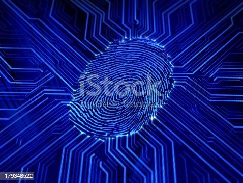 671053272 istock photo fingerprint 179348522