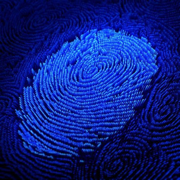 fingerprint - fingerprint stock photos and pictures