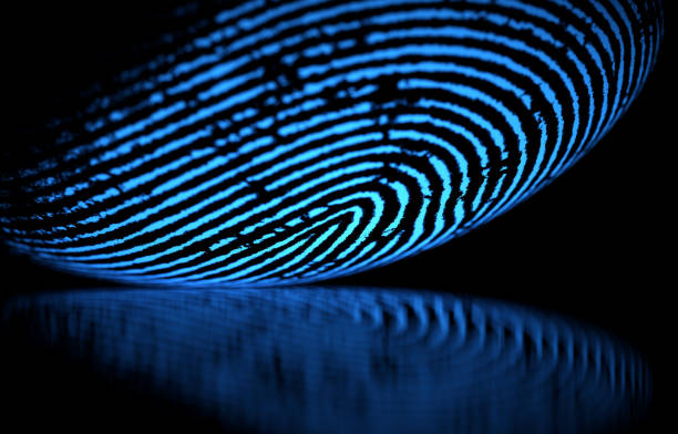 Fingerprint 3D illustration. 3D holographic fingerprint on black background biometrics stock pictures, royalty-free photos & images