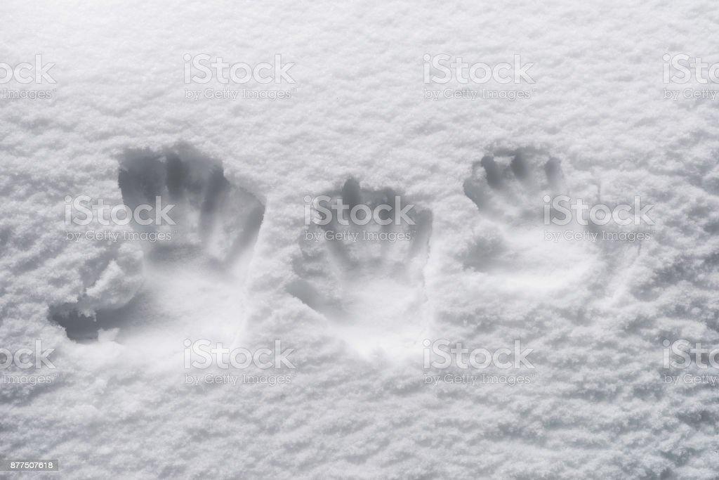 Fingerprints in the snow stock photo