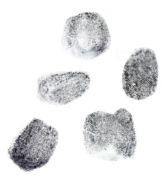 Fingerabdrücke – Foto