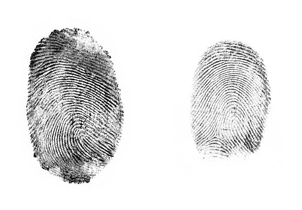 fingerprints isolated fingerprints sherlock holmes stock pictures, royalty-free photos & images