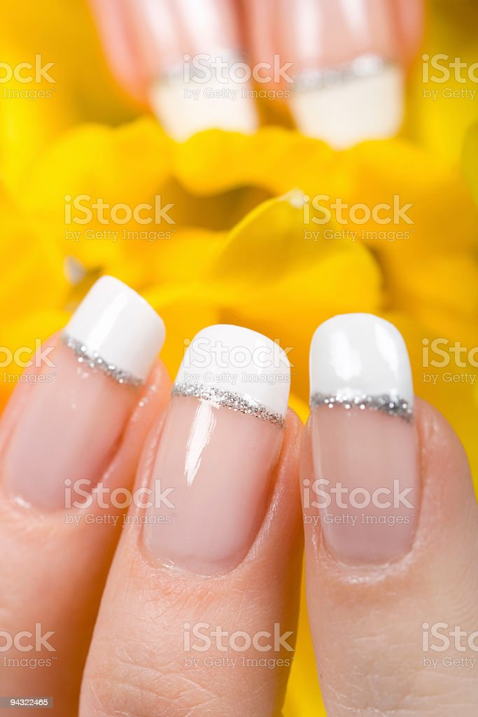 Fingers protecting daffodils royalty-free stock photo