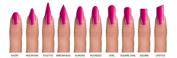 10 finger mit verschiedenen formen der nägel - nails stiletto stock-fotos und bilder
