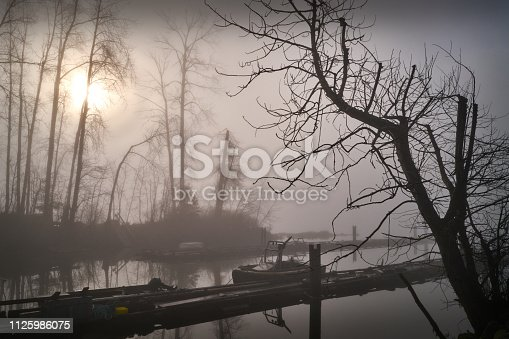 Foggy Finn Slough on the banks of the Fraser River near Steveston in Richmond, British Columbia, Canada.