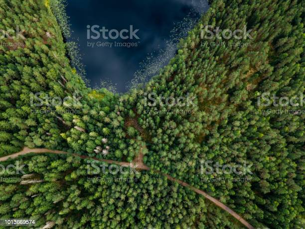 Photo of Finnish landscape in Nuuksio national park. Aerial view to lake
