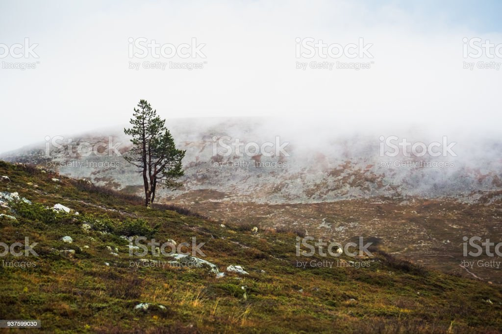 Finnish landscape stock photo