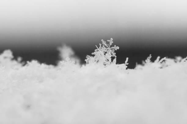 Fiocco di neve macro in inverno - foto di stock immagine - foto stock