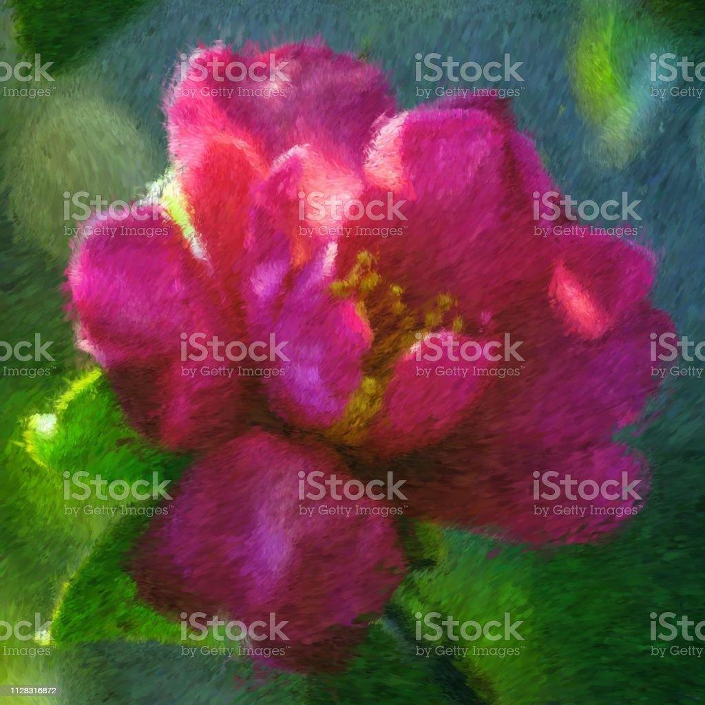 fiore rosa - foto stock
