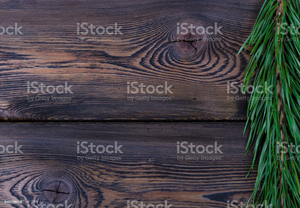 fir branch on a wooden background texture stock photo