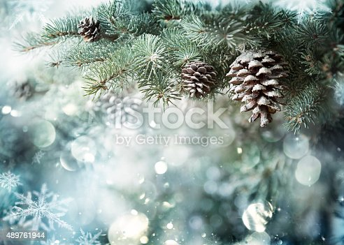 istock Fir Branch With Pine Cone And Snow Flakes 489761944