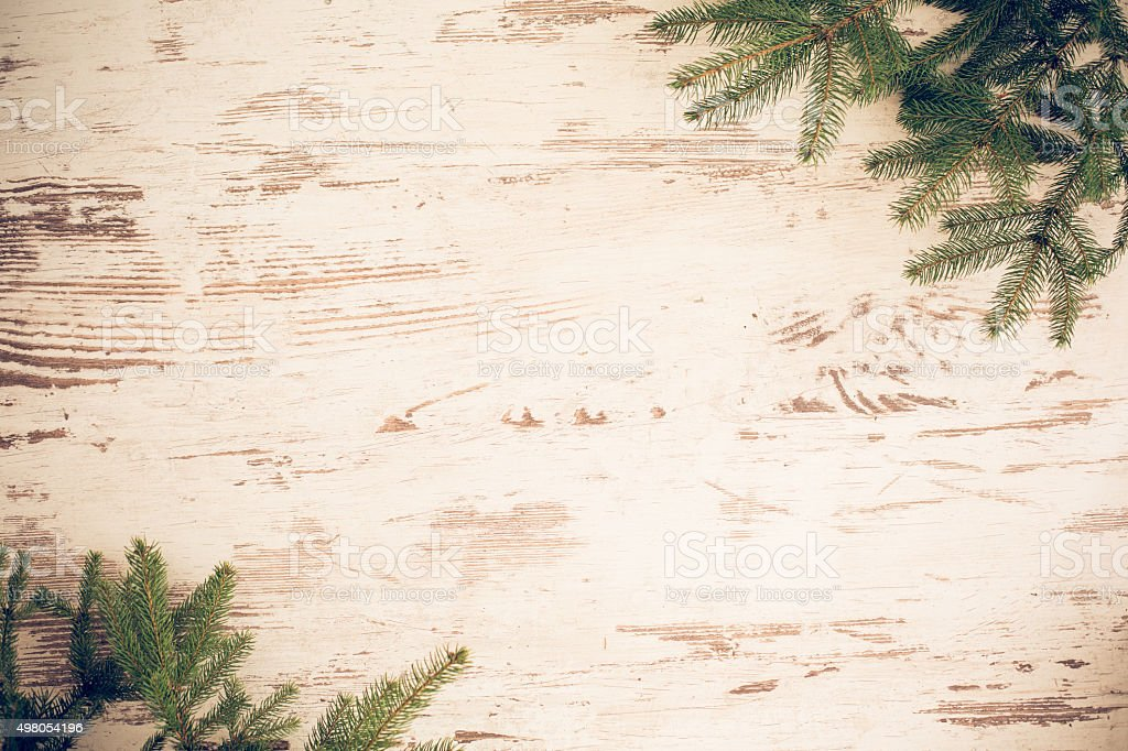 Fir branches on a wooden background stock photo