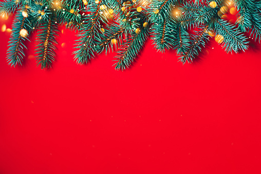 istock Fir branches on red background. Christmas wallpaper. 1175416778