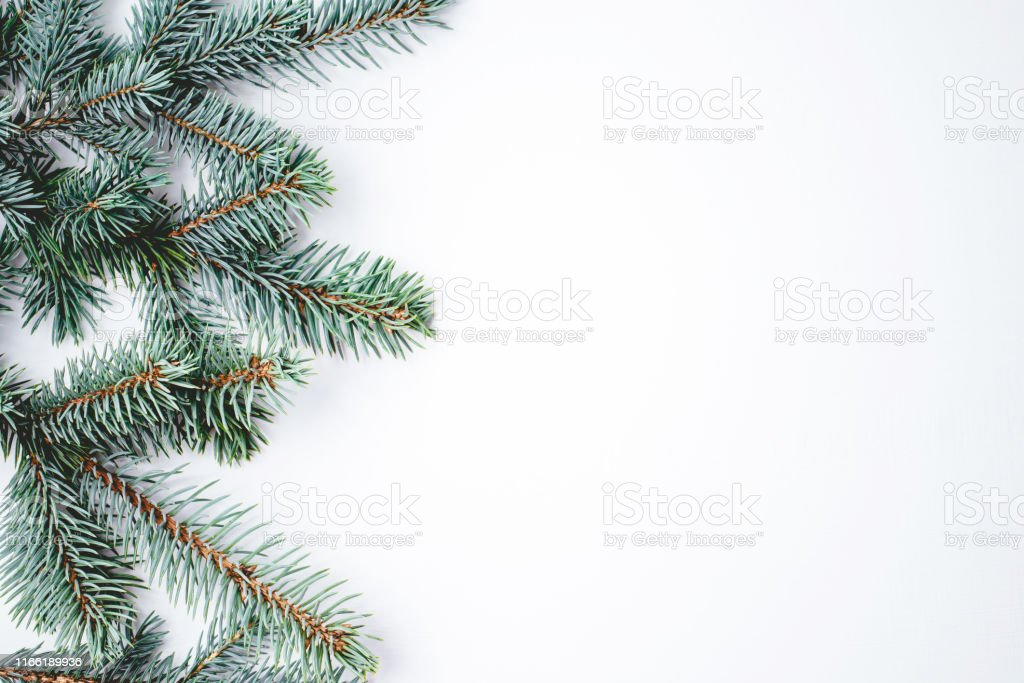 fir branches on white background christmas wallpaper picture id1166189936