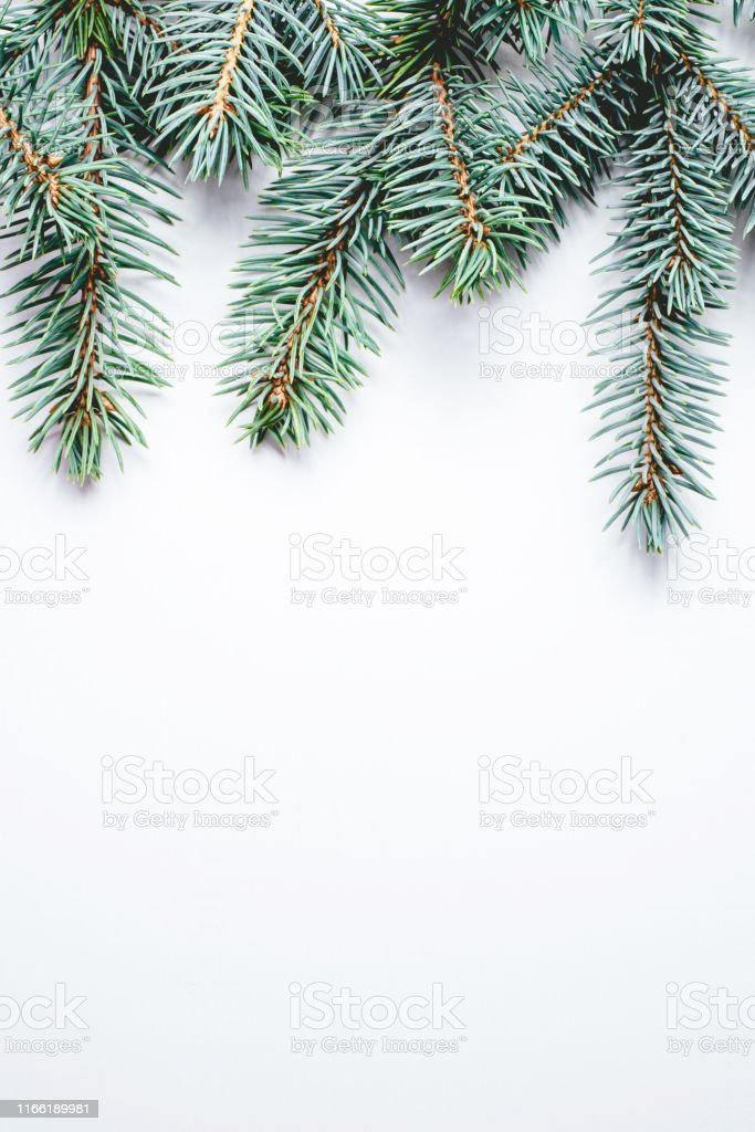 fir branches on white background christmas wallpaper picture id1166189981