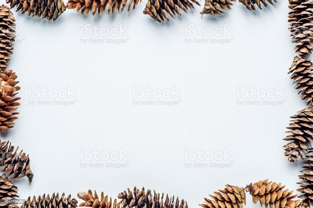 Fir cones on a white background. Christmas frame royalty-free stock photo