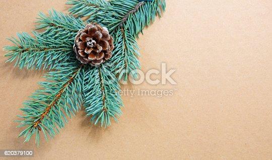 Fir Cones On Green Spruce Branch Isolated - Stockowe zdjęcia i więcej obrazów Bez ludzi