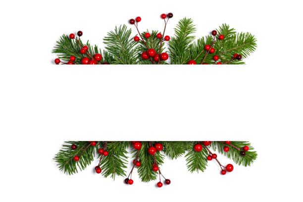 Fir tree branch frame on white stock photo
