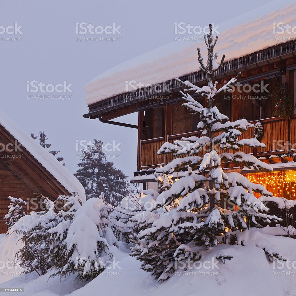 Fir Tree in Front of Chalet stock photo