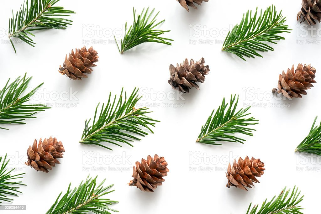 Fir twigs and cones pattern stock photo