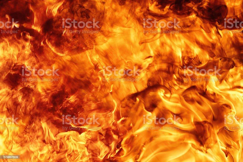 Fire background XXXL royalty-free stock photo