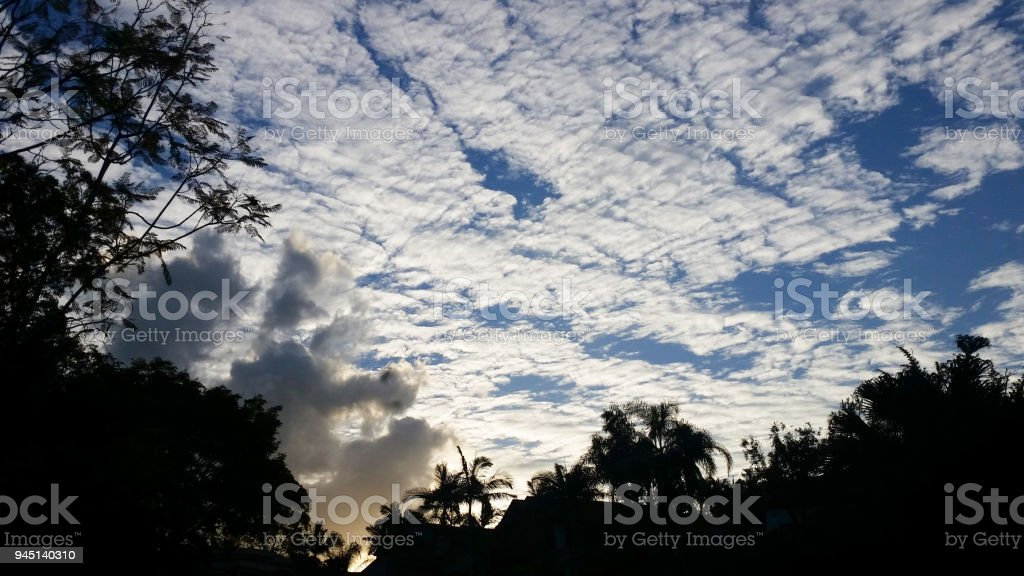 Fire behind silhouetted tropical trees with a huge blue sky with clouds stock photo
