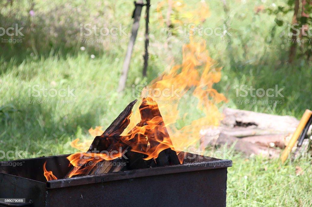 fire burning birch wood in an iron brazier stock photo