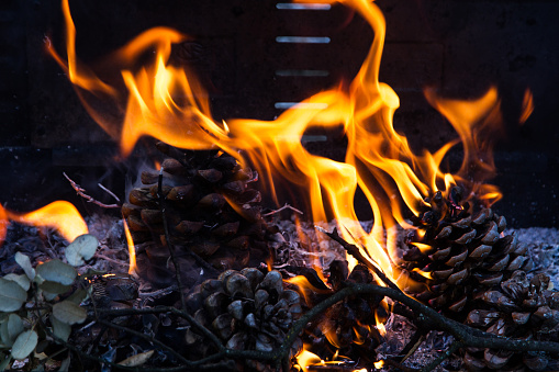 Fire Burning Pine Cones On A Barbecue Stock Photo Download Image