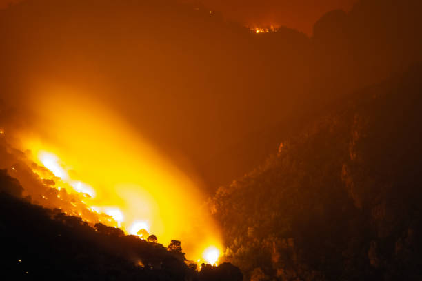 Fire destroying a forest at Loutraki in Greece. stock photo