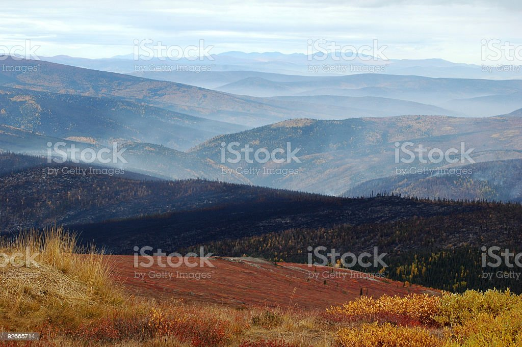 Fire evidence along Top of World Highway,Yukon Territory,Canada royalty-free stock photo