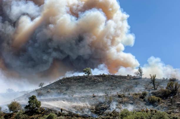 brandweerlieden bestrijden wildvuur - bosbrand stockfoto's en -beelden