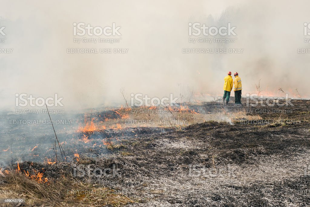 Fire fighters on charred or burned terrain stock photo
