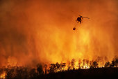 istock Fire fighting helicopter carry water bucket to extinguish the forest fire 1268128811