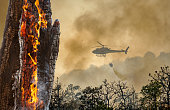 istock Fire fighting helicopter dropping water on forest fire 1329620554
