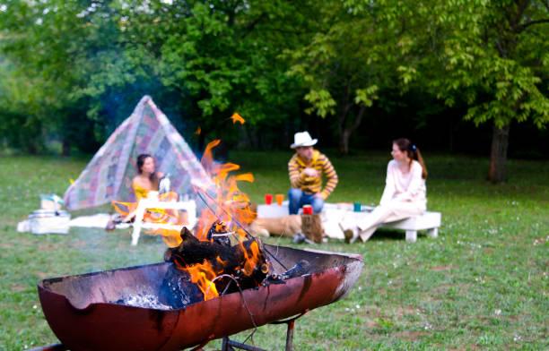 flamme de feu dans le gril de barbecue ferment vers le haut et le fond de personnes de famille dans la nature verte - 1er mai photos et images de collection