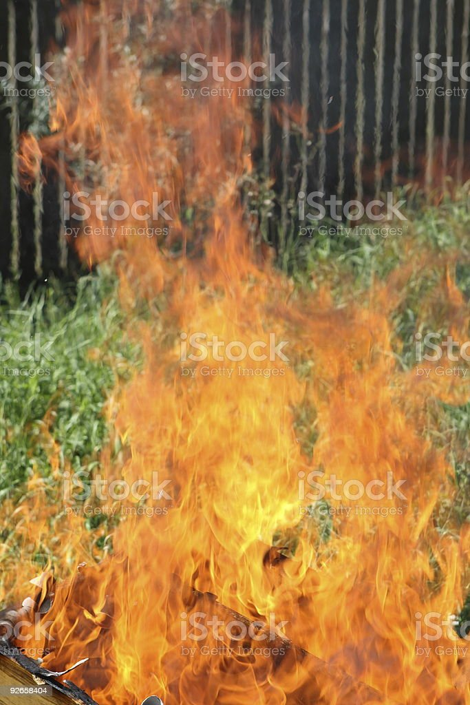 Fire, flame royalty-free stock photo