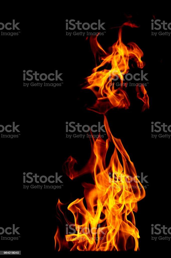 火災炎セットに黒背景に分離 - 美しい黄色、オレンジおよび赤と赤炎火災炎のテクスチャのスタイル。 - まぶしいのロイヤリティフリーストックフォト