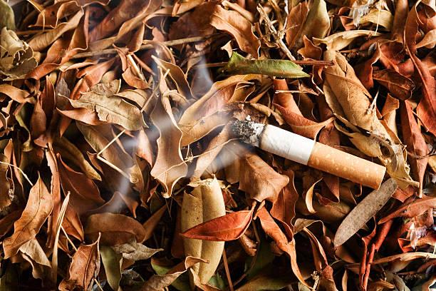 pericolo di incendio - cicca sigaretta foto e immagini stock