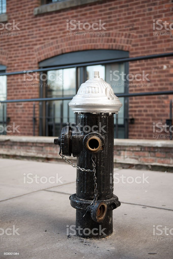 Fire hydrant in New York stock photo