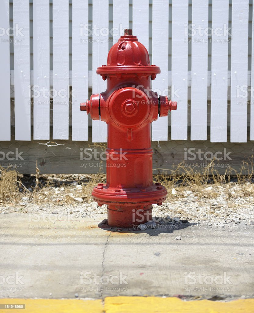 close up on red painted fire hydrant on the sidewalk