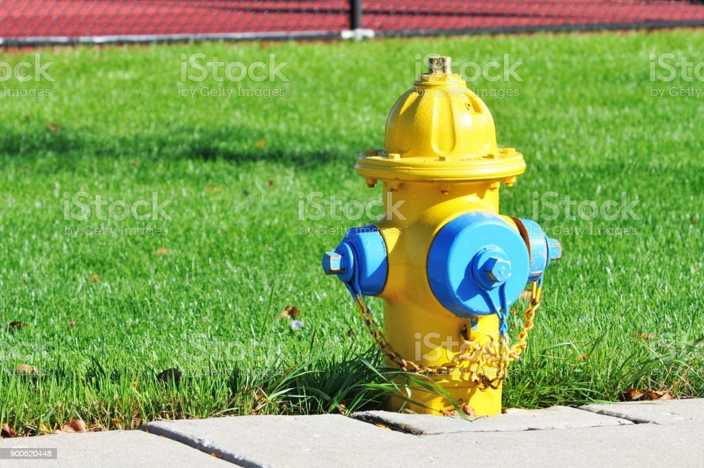 Fire Hydrant  – Foto